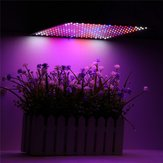 225LED Grow Light Blue & Red & White & Orange Lamp Ultrathin Panel Hydroponics Indoor Plant Veg Flower AC85-265V