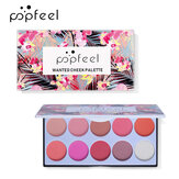 POPFEEL 10 Color Blush Set Without Smudge Nude