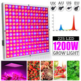 1200W LED Grow Light Panel Growing Lamp Hydroponics Indoor Flower Veg Bloom Lighting AC85-265V