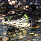 Decorazioniartistichegalleggiantiaformadi coccodrillo con testa di coccodrillo e giardino d'acqua per predatore d'oca Heron Duck Control