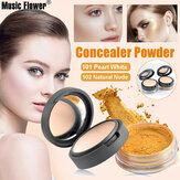 Perfect Pressed Powder + Glitter Loose Powder Paleta de minerales