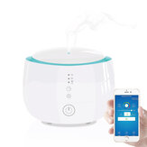 LyRay GD-30E Smart Household Humidifier Aroma Diffuser Touch Control Switch 300ml with APP Control & Amazon Alexa