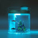 هندسة الأسماك برمائية البيئي خزان الأسماك المرطب فصل نظام الترشيح قوي حوض للأسماك البيئية من Xiaomi Youpin