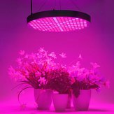 250LED 50W UFO wachsen Licht Vollspektrum Veg Flower Indoor Plant Lamp Panel