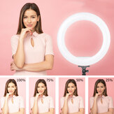 Controllable Portable 2.1m 14 inch Ring Light LED Makeup Ring Lamp USB Selfie Ring Lamp Phone Holder Tripod Stand Photography Lighting