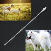 50X Hondenhond Schapen Geit Kunstmatige inseminatie Ras Whelp Soft Katheter Plastic staaf