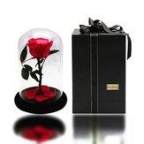 Форевер Роуз Флауэрс День святого Валентина Праздничные подарки из роз в стеклянных украшениях