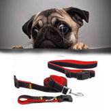 Hands Free Dog Leash Waist Belt Pouch Retractable Lead Walking Running Leash Dog Traction Rope