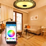 LED RGB Ceiling Light bluetooth Sound Lamp APP Remote Control 100-240V