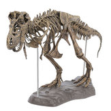 DIY Colour 70Cm T Rex Tyrannosaurus Rex Skeleton Dinosaur Animal Collector Model Decorations