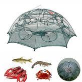 Zanlure 4/6/8/10/12/16/20 Hole Automatic pesca Trampa plegable Nylon pesca Red para trampa de camarones con anguila y cangrejo