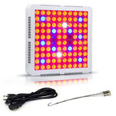 XANE® 100W LED Grow Light Full Spectrum Serre Fleur Plante Lampe Lanterne Tente Lanterne EU / US Plug
