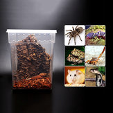 Transparante Plastic Display Box Insect Reptielen Fokken Feeding Tub Turtle Tank 20 * 20 * 25
