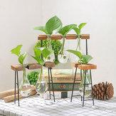 Glasschalen Pflanzgefäße Runde Glas Blumentöpfe Hydroponik Pflanze Transparente Vase Holzrahmen Coffee Shop Dekor
