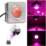 60W 144 LED COB Grow Light Full Spectrum 380-800nm Hydroponic Veg Plant Lamp