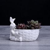 Coniglio Forma di cestino Vaso per fioriera succulenta Herb Flower Gardening Scatola Decorazioni per case