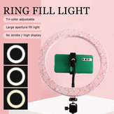 10 inch LED Ring Light Fill Light For Makeup Streaming Selfie Beauty Photography Makeup Mirror Light