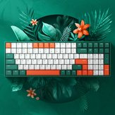 iQunix F96 Jungle Mystery 100 teclas 96% diseño NKRO USB con cable Cherry MX Switch PBT Keycaps RGB Mecánico Gaming Teclado para PC portátil