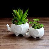 2pcs éléphant résine céramique récipient de plante succulente jardin pot de fleur planteur