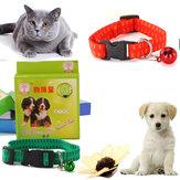कुत्ते और बिल्ली के लिए एंटी पिस्सू और टिक कॉलर यूनिवर्सल पालतू संरक्षण गर्दन का पट्टा