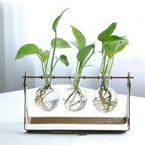 Desktop glazen bloembak vaas met Classic massief ijzeren standaard en metalen draaibare houder voor hydrocultuur planten huis tuin bruiloft Decor