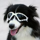 NAMSAN Pet Aksesuarları Güneş Gözlüğü Gözlük Katlanabilir Rüzgar Geçirmez Güneş Koruyucu Gözlük Büyük Köpek Gözlükler Gelen Xiaomi Youpin