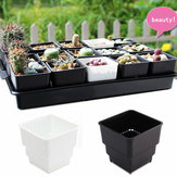 Single-Control Root Breathable PP Resin Flower Pots Home Garden Office Decoration