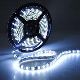 300 LED супер яркий 5050 SMD водонепроницаемый белый flexiblestrip 5м 12v