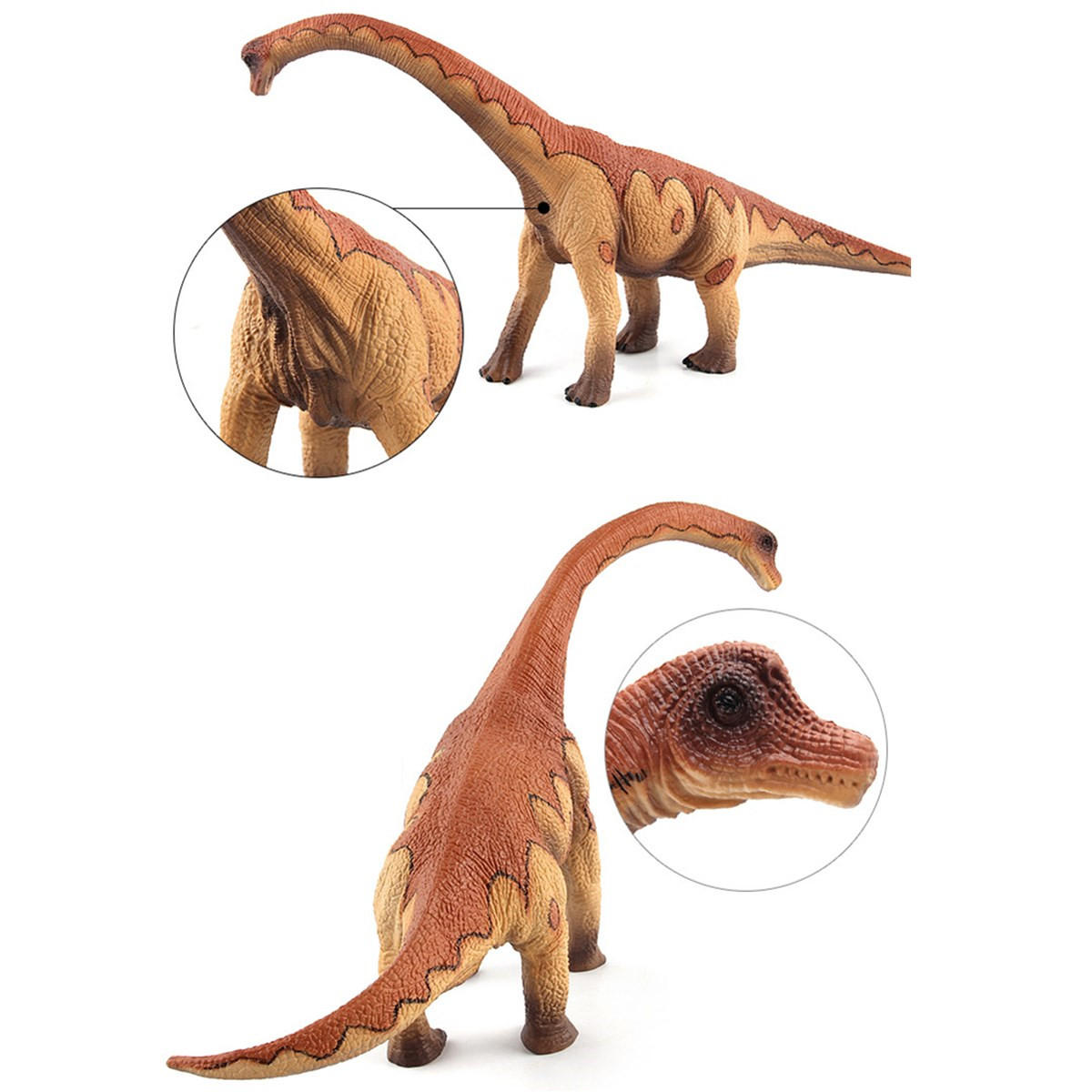 Grande Brachiosaurus Dinosaur Toy Realistic Diecast Model Solid Plastic Gift To Kids - 5