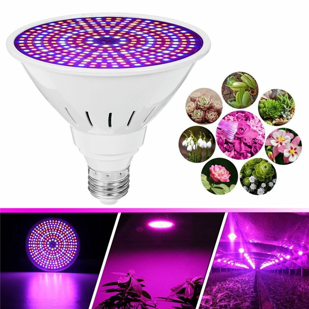 E27 30W SMD2835 LED Wachsen Light Full Spectrum Plant Lampe Set für Blumensamen Gewächshaus AC85 265V - 1
