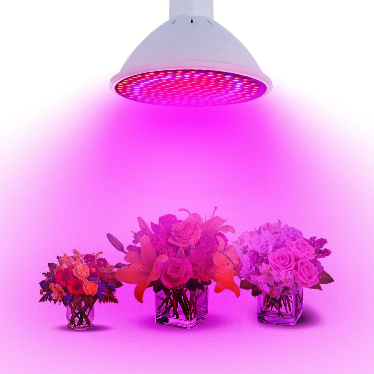 20W E27 166 Red 34 Blue LED Grow Light Plant Lamp Bulb Garden Greenhouse Plant Seeding Light