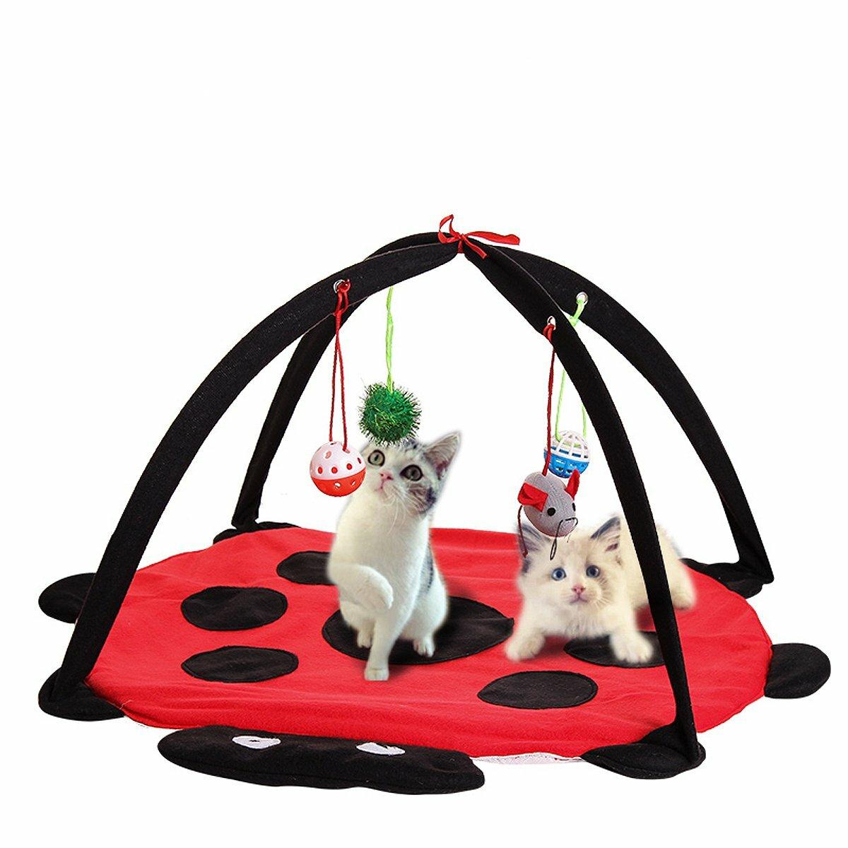 Pet Gato jugar Actividad de cama Tienda de campaña Juguete de juguete Ejercicio Cojín de gatito Mat Casa de campanas