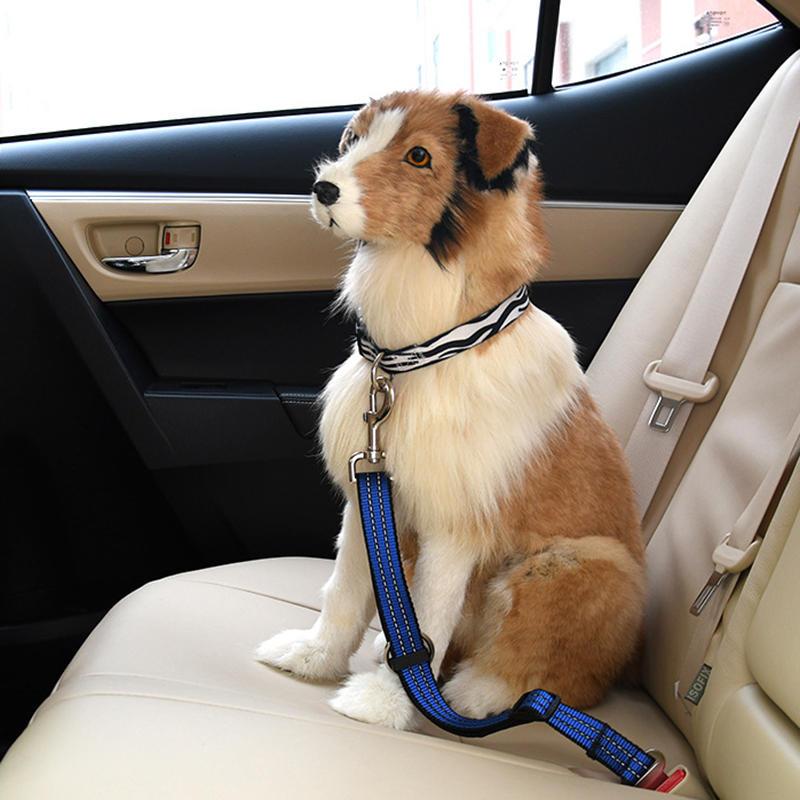 Perro Leopardo retráctil Coche Asiento Cinturón Seguridad Cuerda Asiento para cachorros Cinturón Correas universales