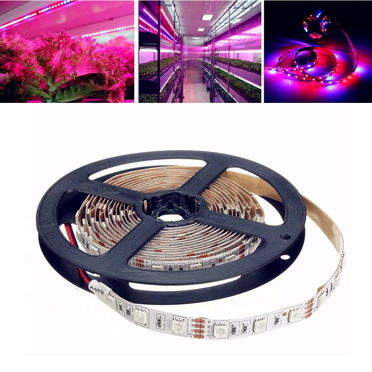 cheap for discount 473dc 308a9 1M/2M/3M/4M/5M SMD5050 Non-Waterproof LED Grow Lights Full Spectrum Plant  Strip Lamp DC12V