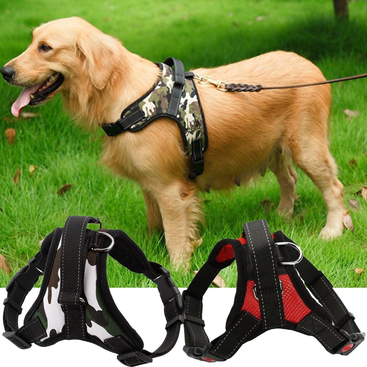 L Xl Dogs Harness Collars Tactical Vest