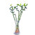 Egrow 30 PCS/Pack Bamboo Bonsai Seeds Potted Plants Purify Dracaena Plantas Planting Simple for Gardening