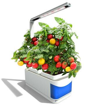Bigin Indoor Herb Hydroponics Plants Garden Kit Lamp Adjustable Grow Lamp