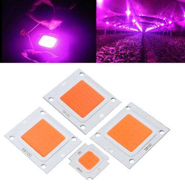 50W 70W 100W LED 옥 내부 정원 플랜트 라이트 칩 성장 DIY 전체 스펙트럼 성장 램프