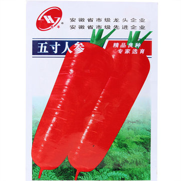 800pcs Red Carrot Seeds Vegetable Plant Food