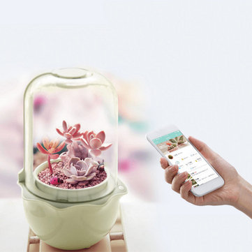 USB WiFi Intelligent Glass Succulent Plant Container Flower Pot Ecological Bottle LED Light Water Reminder